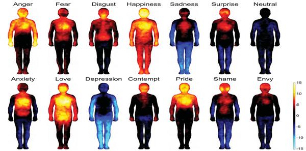 Hva er følelser? Psykolog forklarer. 3